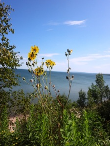Lake Superior near the mouth of the Bad River which would bear the brunt of toxic runoff from massive tailing piles from an open pit mine.