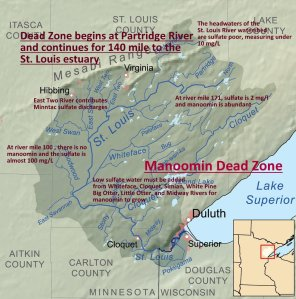 Wild rice dead zone on the St. Louis river as the result of sulfates resulting from taconite mining upriver.