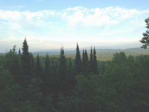 The Penokee Hills, where Gogebic Taconite (GTac) recently dropped plans for a proposed iron ore mine. Act 1, the contentious new mining law, was written by Gogebic Taconite (Gtac) and stripped away environmental protections of state resources. Citizens can attend their county's Conservation Congress and introduce a resolution to repeal Act 1. Photo: Lyn Tribble